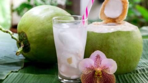 Manfaat Minum Air Kelapa bagi Kesehatan Tubuh