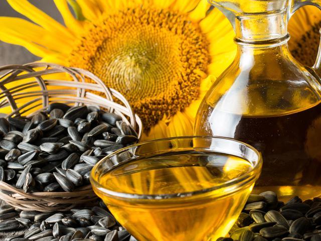 Manfaat Biji Bunga Matahari Bagi Kesehatan